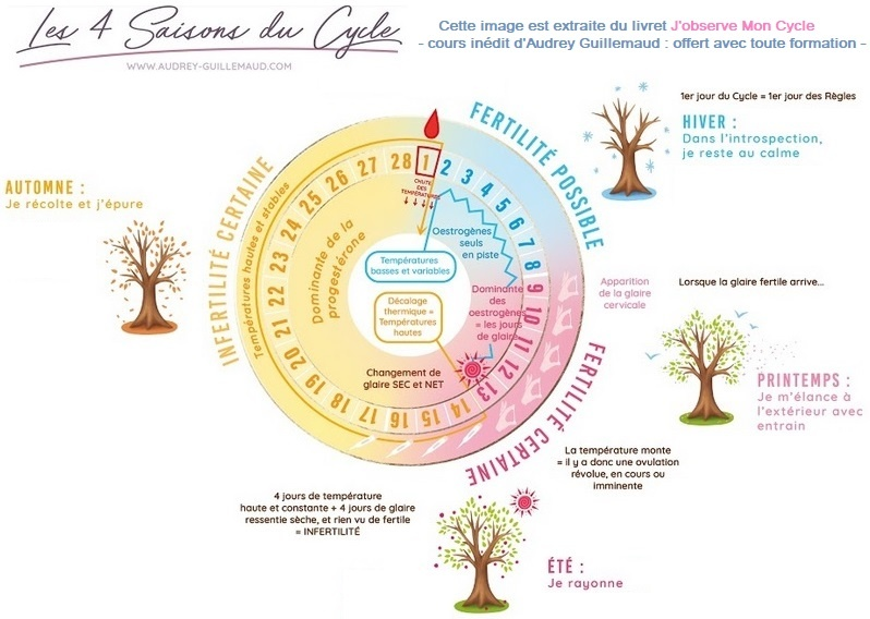 Guide de la contraception naturelle par Audrey Guillemaud