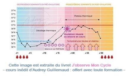 Cycle féminin et contraceptions naturelles nouvelle édition Audrey Guillemaud